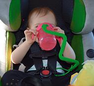 cupcatcher babytrendwatcher 1