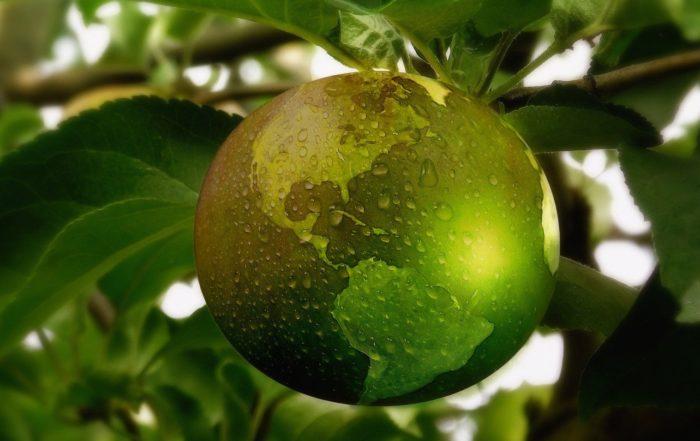 sustainability in babymarket